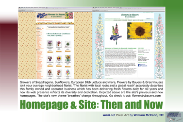 Homepage & Site: Then and Now